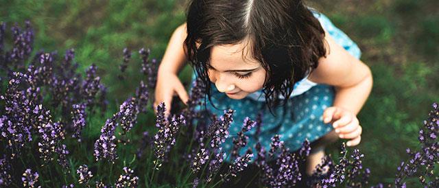 scent-tout-image.jpg